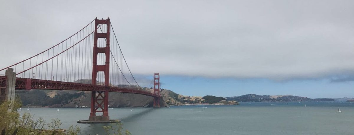 Solo Adventures in the Bay
